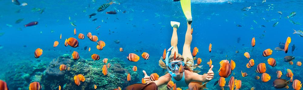 scuba diving brisbane, diving, Manta Lodge & Scuba Centre, North Stradbroke Island, Straddie, YHA, SSI, PADI, learn to dive, best scuba diving school brisbane, open water , best scuba diving brisbane, best scuba diving brisbane area
